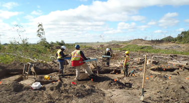 Staff working at an Archaeological Site in the Highway 407 East Corridor