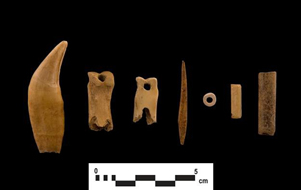 A sample of Indigenous  Bone Artifacts Found on the 407 East Site