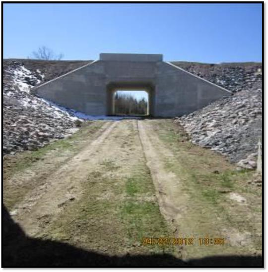 Photo T: 5m x 5m culvert passage for wildlife and people, under Highway 69, north of the wildlife overpass.