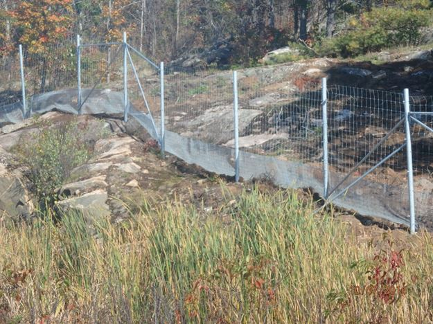 Photo P: Combined reptile and large mammal fencing provides exclusions from the highway for all species.
