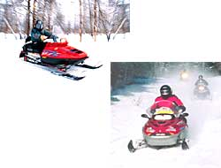 Photo of snowmobiles on the trail