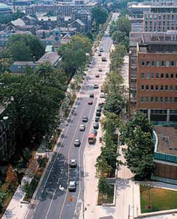 St. George Street running through the heart of the University of Toronto campus was rebalanced in 1997 through the addition of bike lanes and pedestrian-supportive paving treatments to create a street that better supports the many pedestrians and cyclists that use it daily.