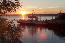 Glenora ferry at sunset